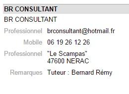 Br consultant